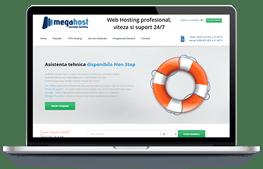 Megahost - screenshot website